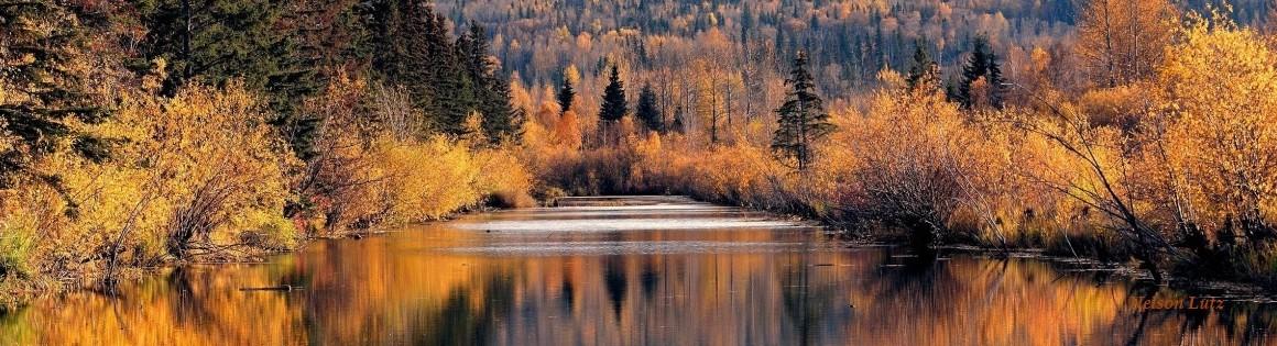 river-Nelsonwebname